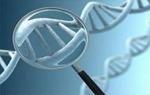 DNA识别