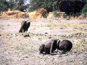 凯文卡特――《饥饿的苏丹》