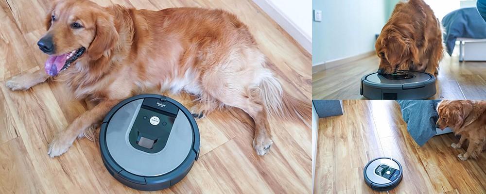 宠物毛发克星 iRobot 960扫地机图赏