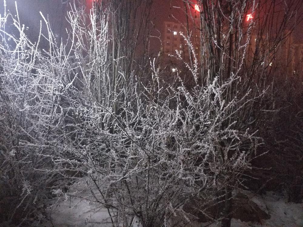 是霾还是雪?