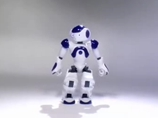 互动机器人Aldebaran Robotics' Nao