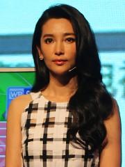 中国著名演员<br> 李冰冰