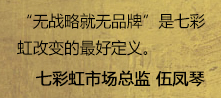 DIY年鉴:专访七彩虹市场总监伍凤琴