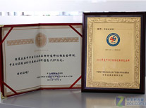 中华IT服务创新示范品牌