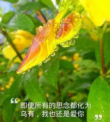 光影记—魅族MX3