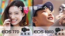 佳能EOS 77D/800D新登场