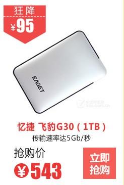 忆捷 飞豹G30(1TB)
