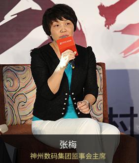 张梅 神州数码集团监事会主席