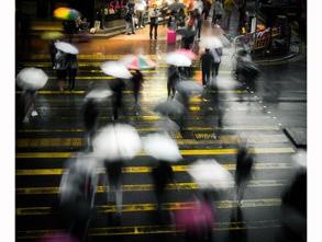 二等奖:《雨中即景 》 蜂鸟id:巧眼笨手