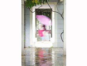 三等奖:《 雨调 》 蜂鸟id:一直摄影