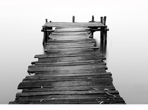 二等奖:《静谧黑白》组图  作者:yjj0170