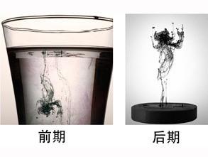 二等奖:《舞文弄墨》  蜂鸟id: 蒯小翔的摄影视界