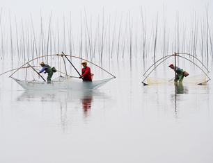 《渔光曲》