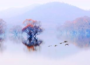 许亭湖上秋色浓