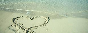 阳光的夏天【爱在加勒比海】