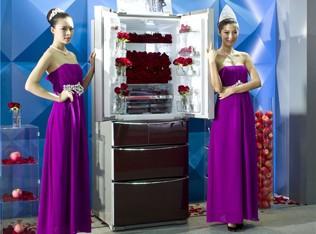 帝度发布高端多开门冰箱