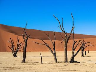 行摄史上最古老红沙漠