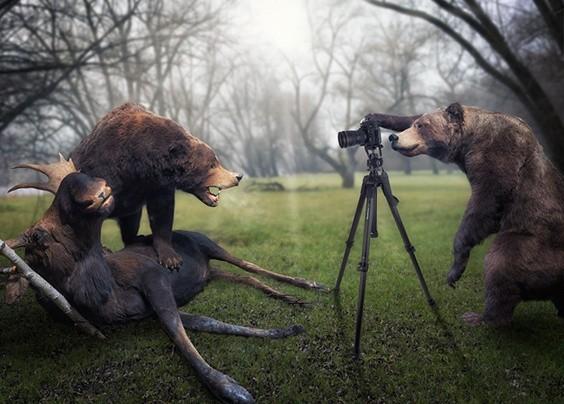 欣赏来自John Wilhelm的一组高端后期制作的摄影作品