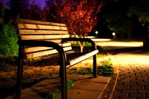 夕阳下的奥林匹克森林公园