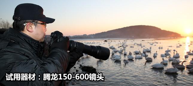 腾龙150-600镜头