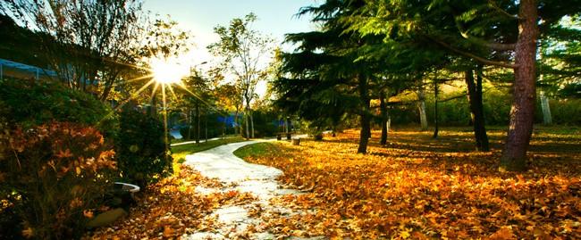 秋日晴朗的大连